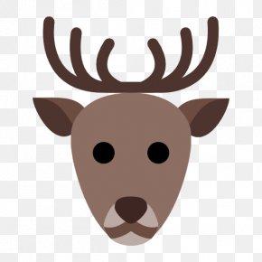 Reindeer - Reindeer PNG