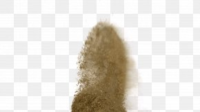 Sand - Soil Science Soil Biology Soil Organic Matter PNG