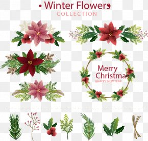 Winter Flowers Collection - Flower Floral Design Euclidean Vector Illustration PNG