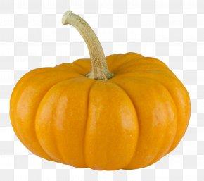 Pumpkin - Pumpkin Pie Calabaza PNG