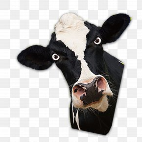 Cow Head - Dairy Cattle Bull PNG