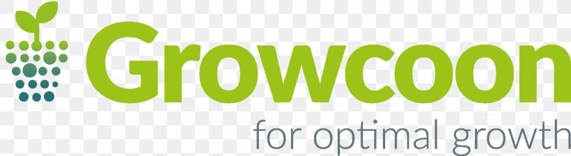 Logo Brand Font Product, PNG, 2000x548px, Logo, Brand, Grass, Green, Insurance Download Free