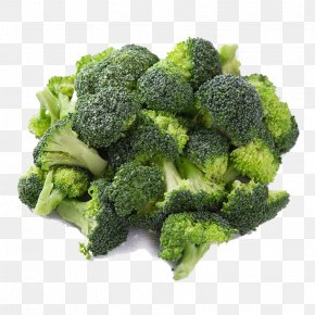 A Broccoli - Vegetable Broccoli Food PNG