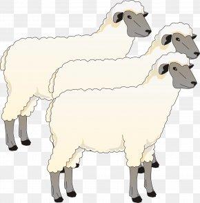 Goat - Blackhead Persian Sheep Goat Cotswold Sheep Southdown Sheep Clip Art PNG