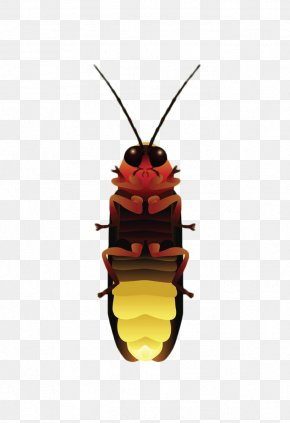 Yellow Firefly - Stock Illustration Royalty-free Illustration PNG