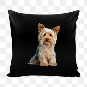 Puppy - Yorkshire Terrier Rat Terrier Cairn Terrier West Highland White Terrier Boston Terrier PNG