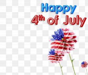 Wildflower Plant - Fourth Of July Background PNG