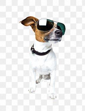 Proud Dog Wearing Sunglasses - German Shepherd Pet Sitting Dog Walking Cat PNG