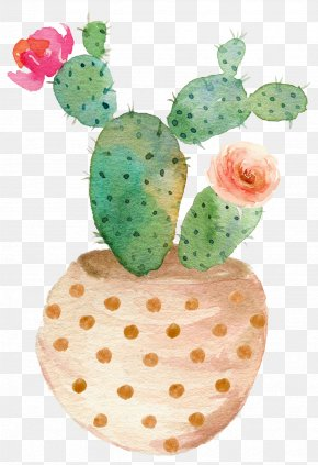 Drawing Potted Cactus Bloom - Watercolor Painting Succulent Plant Cactaceae Clip Art PNG