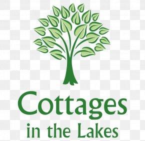 Exotic Holiday - Logo Plant Stem Leaf Brand Font PNG