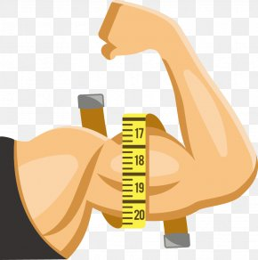 Man Arms Vector - Muscle Arms Muscle Arms Thumb PNG
