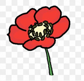 Poppy Cliparts - Draw Flowers Remembrance Poppy Drawing Clip Art PNG