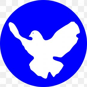 Dove Vector - Peace & Justice Center Peace Symbols Doves As Symbols Peace Movement PNG