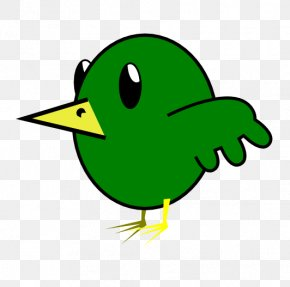 Bird Graphics - Bird Parrot Cartoon Clip Art PNG
