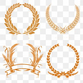 Wheat Creative Decorative Borders - Laurel Wreath Stock Photography Clip Art PNG