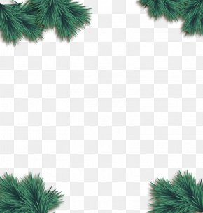 Vector Decorative Pine - Christmas Euclidean Vector Pine PNG
