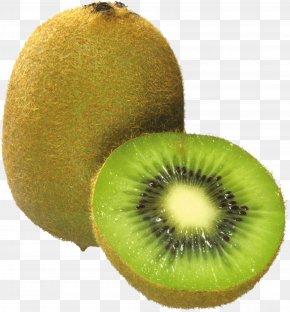 Kiwi Image, Free Fruit Kiwi Pictures Download - Kiwifruit Clip Art PNG