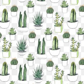 Hand Painted Cactus - Cactaceae Watercolor Painting Printmaking Printing Wallpaper PNG