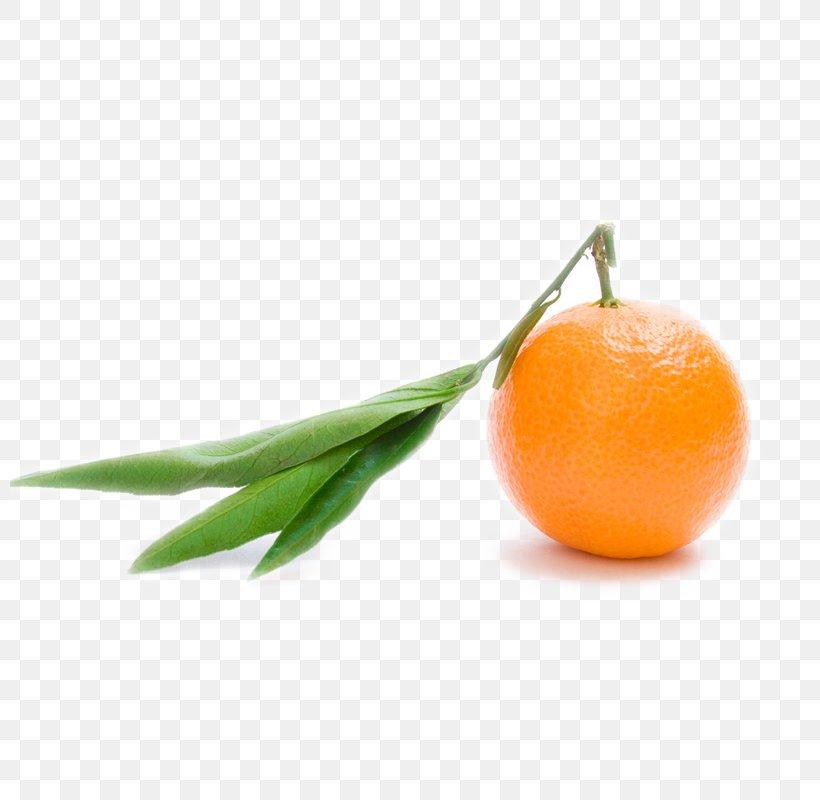 Orange Juice Clementine Orange S.A. Mandarin Orange, PNG, 800x800px, Orange Juice, Citric Acid, Citrus, Clementine, Diet Food Download Free