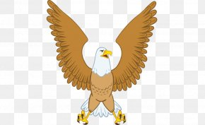 Falcon Cartoon Vector Illustration - Eagle Cartoon Euclidean Vector Illustration PNG