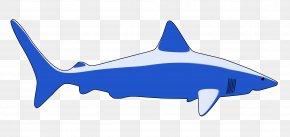 Star Ocean - Blender Download Clip Art PNG