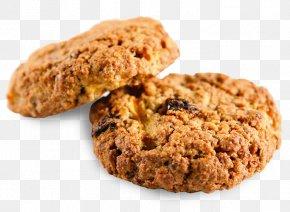 Biscuit - Macaroon Chocolate Bar Sugar Cookie PNG