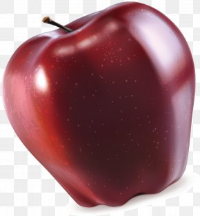Red Apple Vector - Red Euclidean Vector PNG