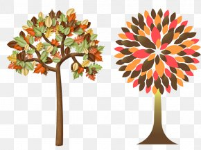 Autumn Trees Material - Tree Autumn Leaf Color Clip Art PNG