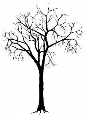 Free Tree Silhouette - Tree Silhouette Deciduous Clip Art PNG