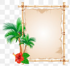 Summer Papyrus Clipart - Picture Frame Bambusodae Clip Art PNG
