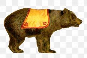 Brown Bear - Brown Bear Circus Clip Art PNG