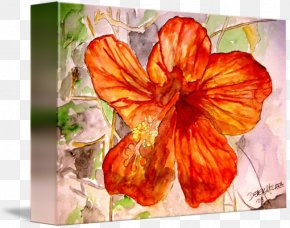 Painting - Hibiscus Gallery Wrap Canvas Painting Art PNG