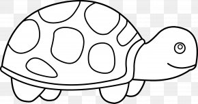 Black And White Car Clipart - Sea Turtle Black And White Clip Art PNG