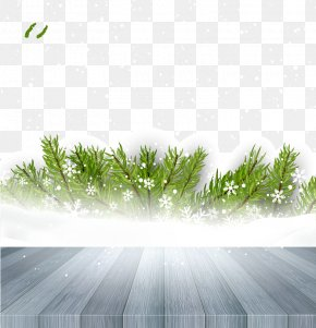 Gray Snow On The Floor - Snow Clip Art PNG