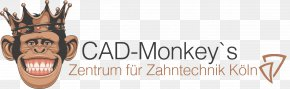 Season 1 Television Show Logo Auf Der KaiserbitzBraun - Zentrum Für Zahntechnik Köln Dexter PNG