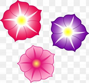Colorful Flowers File - Petunia Pink Flowers Drawing Clip Art PNG