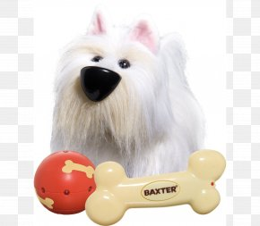 Dog - Dog Toy Child Puppy Ball PNG