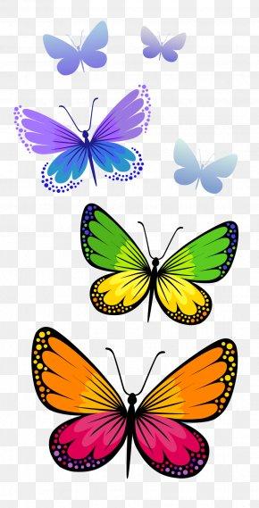 Butterflies Composition Clipart Image - Butterfly Clip Art PNG