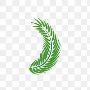 Palm Leaf Green Vector Decoration - Leaf Arecaceae Euclidean Vector PNG