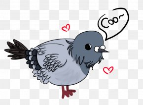 Chicken - Chicken Bird English Carrier Pigeon Homing Pigeon Rooster PNG