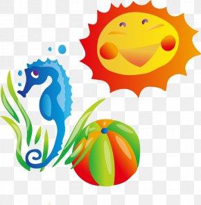 Hippocampus Ball Sun Vector Material - Summer Stock Photography Clip Art PNG