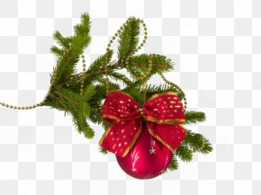 Christmas - New Year Tree Christmas Holiday PNG