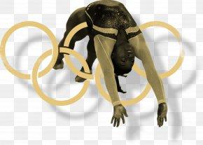 Gymnastics - World Artistic Gymnastics Championships Olympic Games Rio 2016 Rio De Janeiro PNG