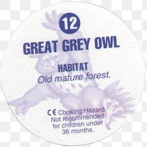 Great Grey Owl - Great Horned Owl Bird Of Prey Great Grey Owl PNG