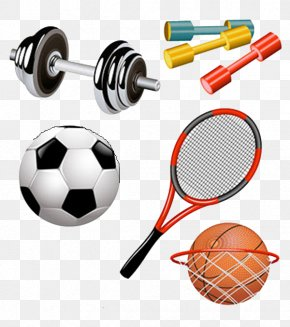 Cartoon Sports Equipment - Sports Equipment Euclidean Vector Clip Art PNG