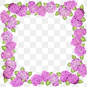 Purple Flower Frame - Picture Frame Flower Purple Clip Art PNG