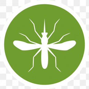 Mosquito - Mosquito Nets & Insect Screens Tropical Disease Insecticide Malaria PNG