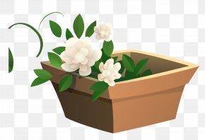 Vector Pot - Flowerpot Euclidean Vector Plant PNG