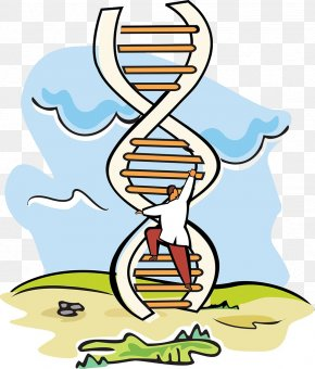 Scientific Experiments DNA Ladder - A-DNA Scientist Stock Photography Molecular-weight Size Marker PNG