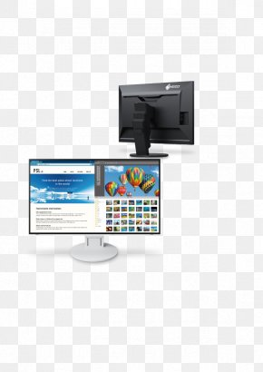 Computer Monitor - Eizo Computer Monitors Display Device 4K Resolution DisplayPort PNG